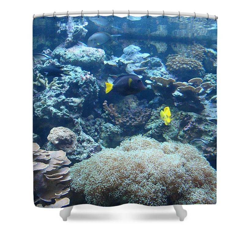 Coral Reef Shower Curtain Featuring The Photograph By Anthony Seeker