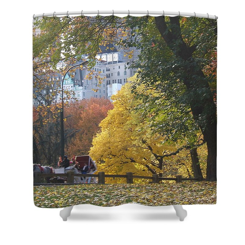 central Park Shower Curtain featuring the photograph Country Ride In The City by Barbara McDevitt