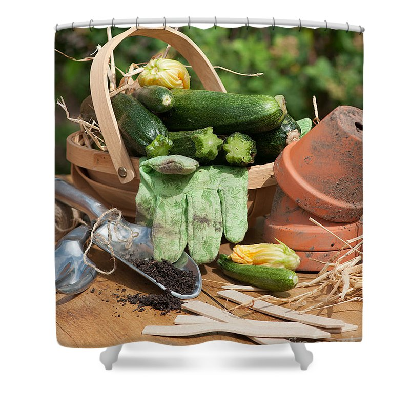 Courgettes Shower Curtain featuring the photograph Courgette Basket With Garden Tools by Amanda Elwell