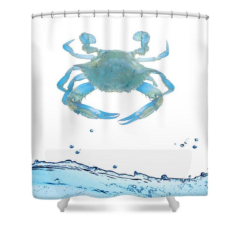 Under Water Shower Curtain featuring the digital art Crab Strolling Around by Art Spectrum