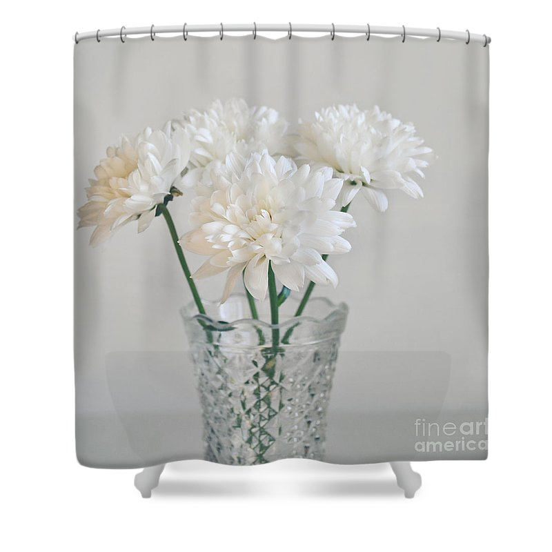 Chrysanthemums Shower Curtain Featuring The Photograph Creamy White Flowers In Tall Vase By Lyn Randle