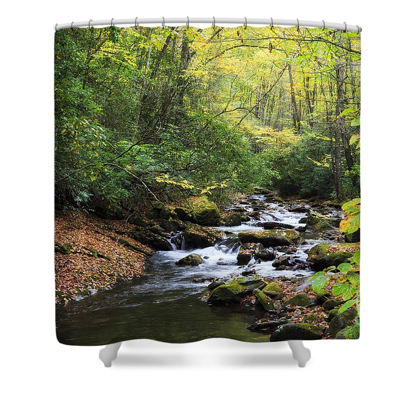 Creek Shower Curtain featuring the photograph Creek In The Woods by Jill Lang