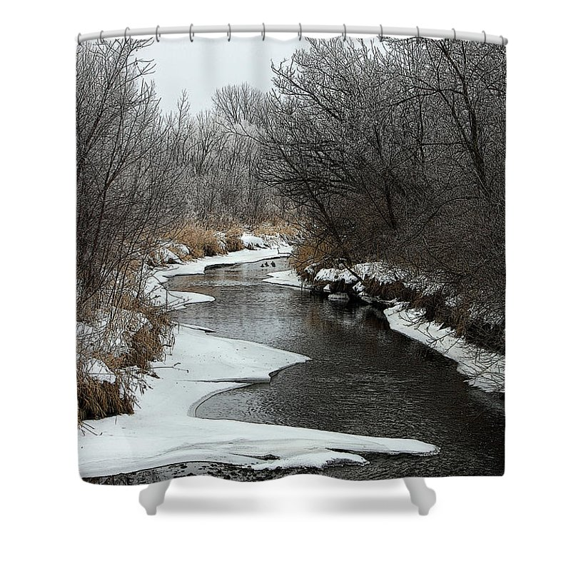 Shower Curtain featuring the photograph Creek Mood by Debbie Hart