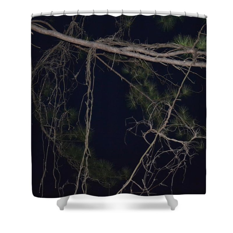 Night Shower Curtain featuring the photograph Creepy Tree by Tara Potts