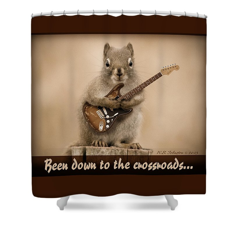 Squirrel Shower Curtain featuring the photograph Crossroads by WB Johnston