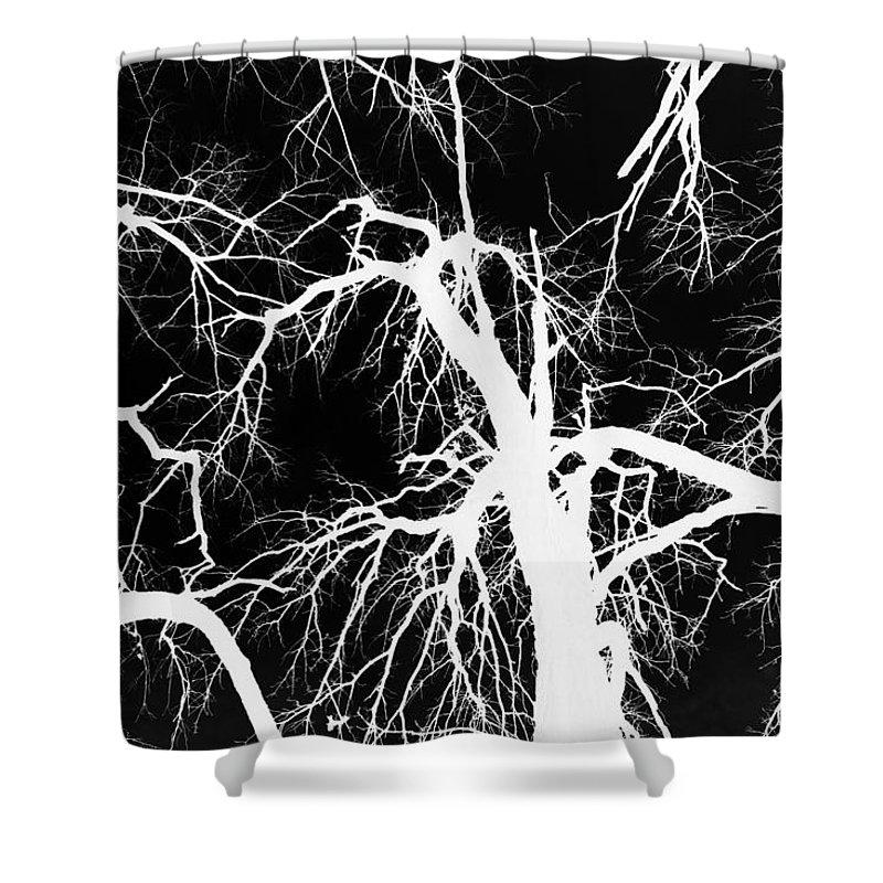 Jamie Lynn Gabrich Shower Curtain featuring the photograph Crowding White by Jamie Lynn
