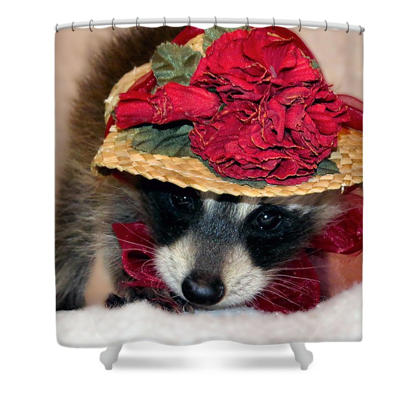 Curtsey Shower Curtain featuring the photograph Curtsey by Art Dingo
