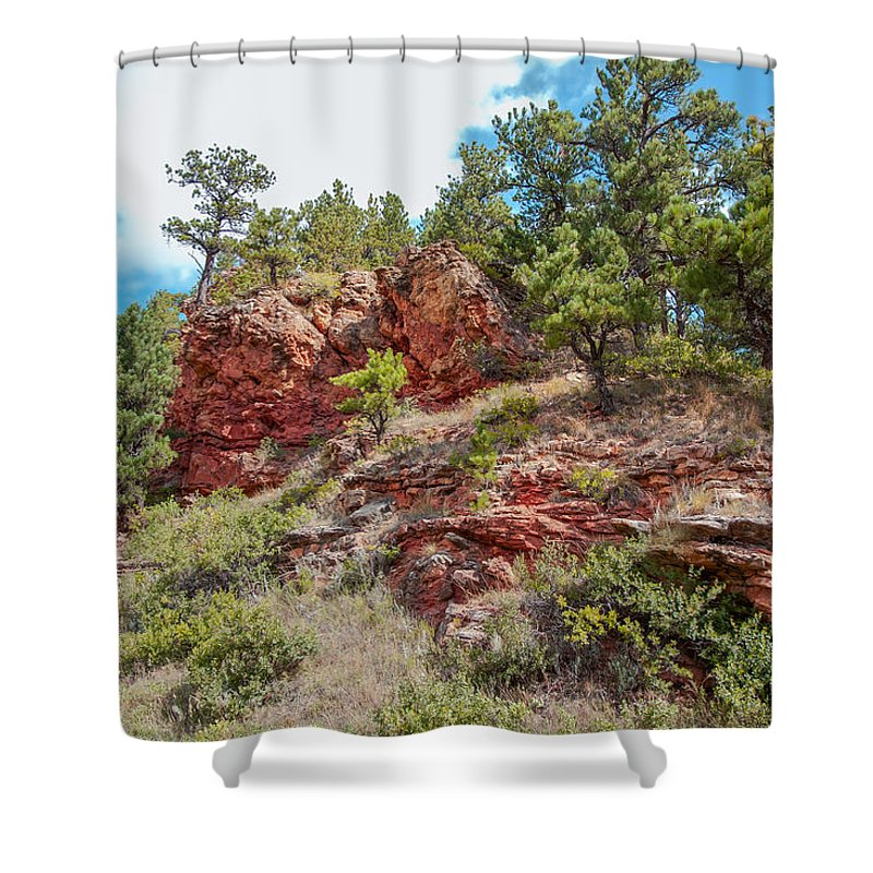 Landscape Shower Curtain featuring the photograph Custer State Park Ecology by John M Bailey