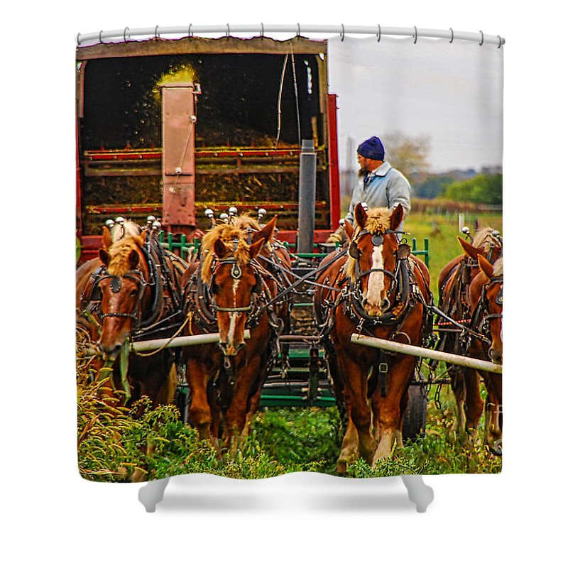 Horse Shower Curtain featuring the photograph Cutting Silage 2 by Mary Carol Story