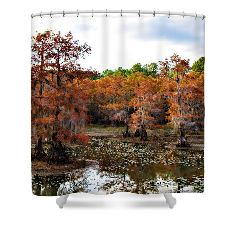 Autumn Shower Curtain featuring the photograph Cypress Isles by Lana Trussell