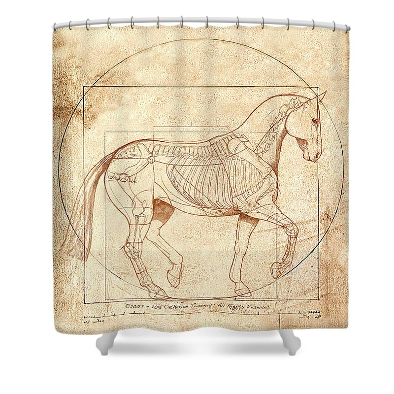 Horse Riding Shower Curtains