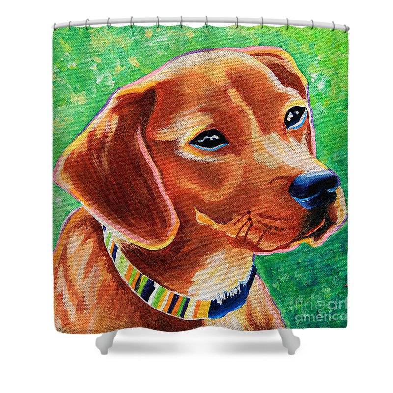Mixed Breed Shower Curtain Featuring The Painting Dachshund Beagle Dog Portrait By Robyn Saunders
