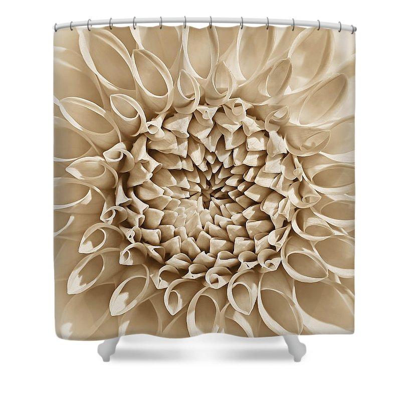 Dahlia Shower Curtain featuring the photograph Dahlia Flower Star Burst Sepia by Jennie Marie Schell