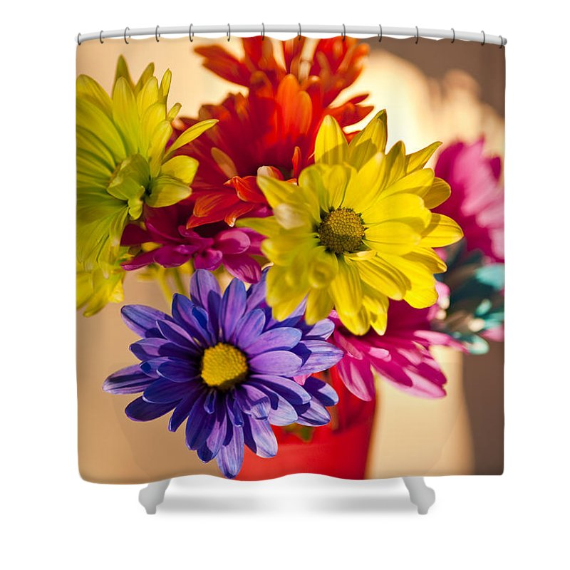 Art Shower Curtain featuring the photograph Daisies In A Vase On Shelf by Jim Corwin