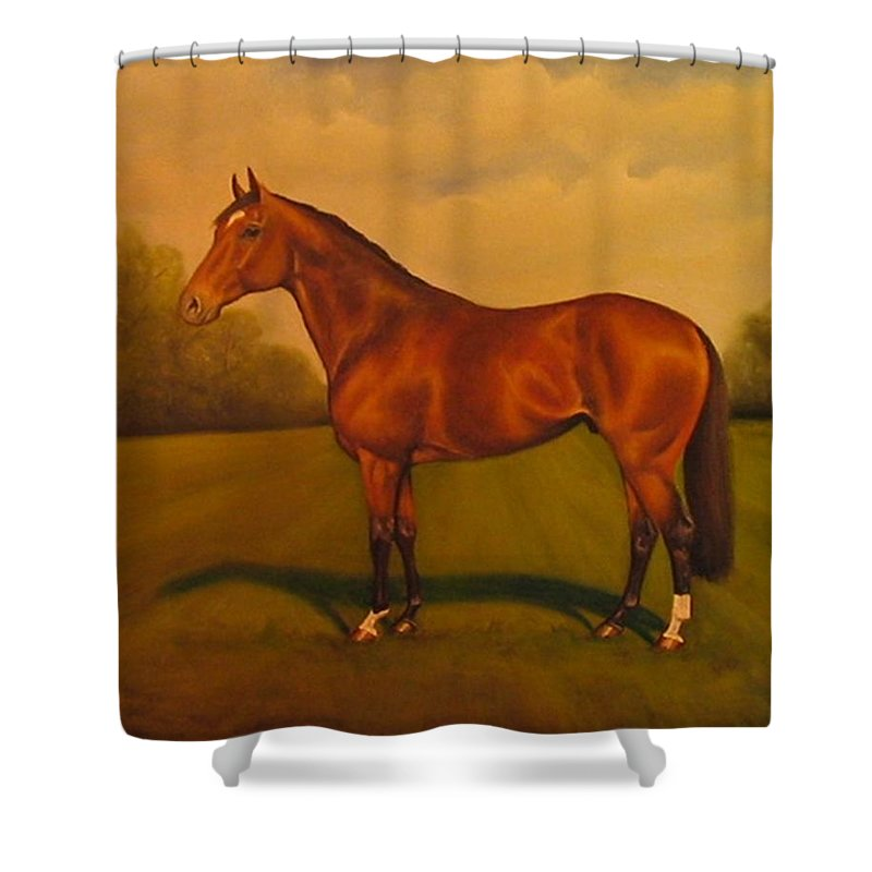 Racehorse Shower Curtain featuring the painting Danehill by Birgit Schnapp