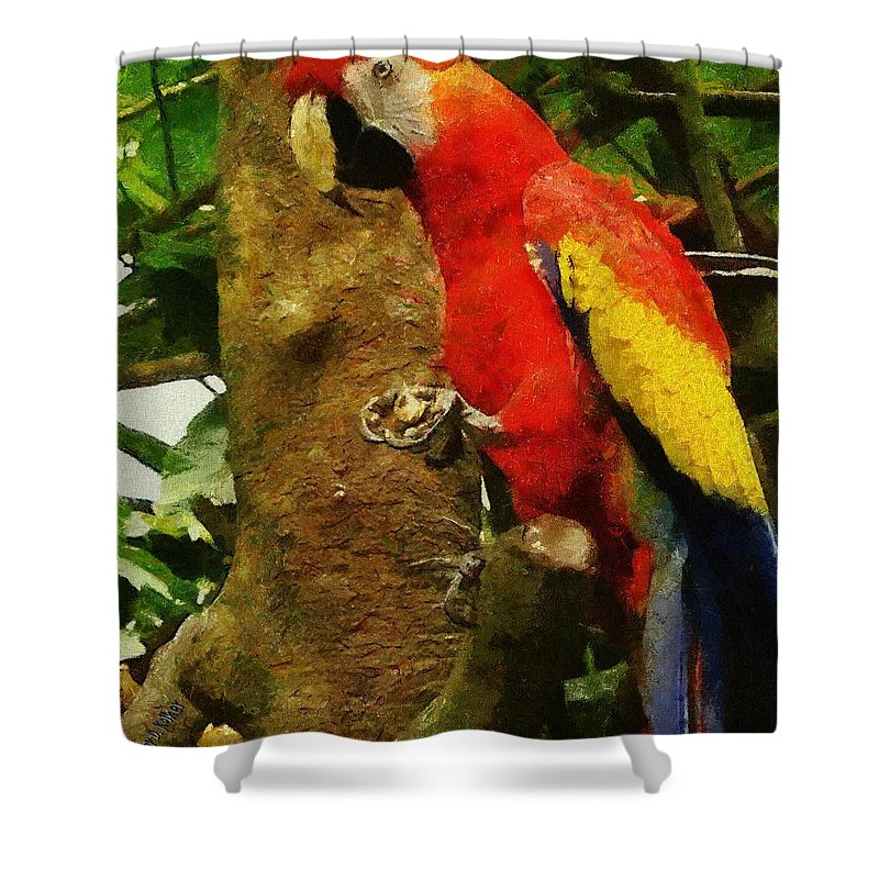 America Shower Curtain featuring the painting Danse Macaw by Jeffrey Kolker
