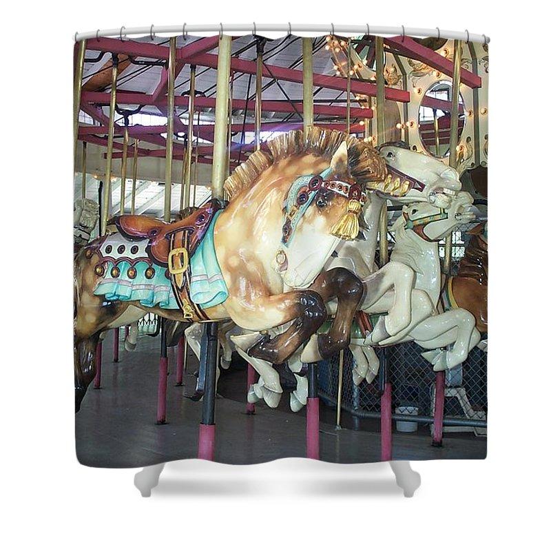 c F Johnson Park Ny Shower Curtain featuring the photograph Dapled Pony by Barbara McDevitt