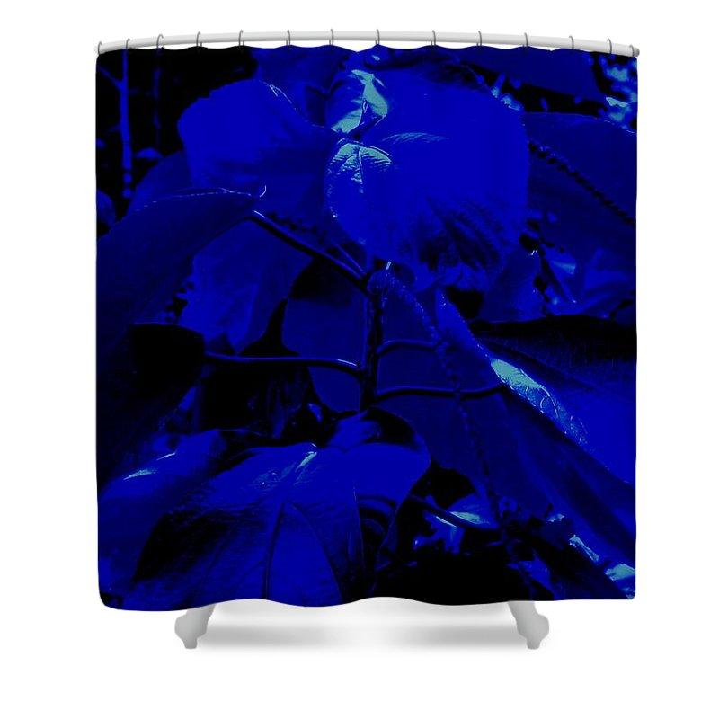 Leaves Shower Curtain featuring the photograph Dark Blue Leaves by Ian MacDonald