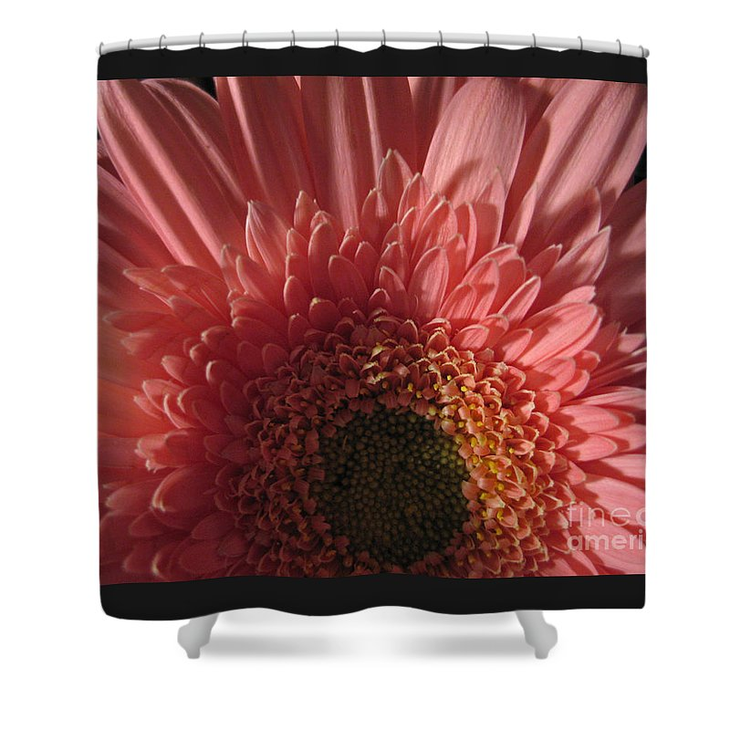 Flower Shower Curtain featuring the photograph Dark Radiance by Ann Horn