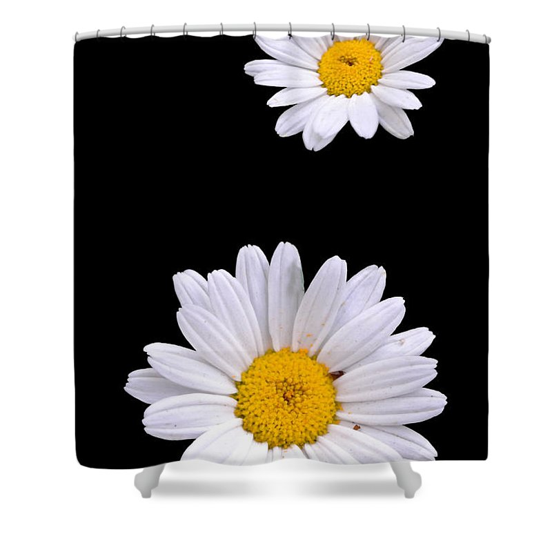 Flower Shower Curtain featuring the digital art Dasiy by Nathan Wright