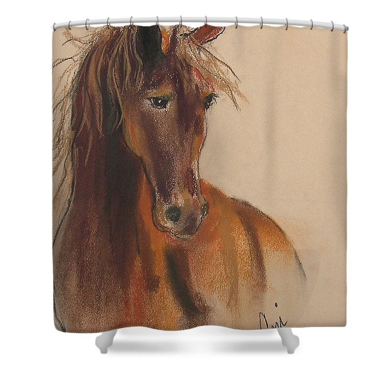 Horse Shower Curtain featuring the drawing Day Dreamer by Cori Solomon