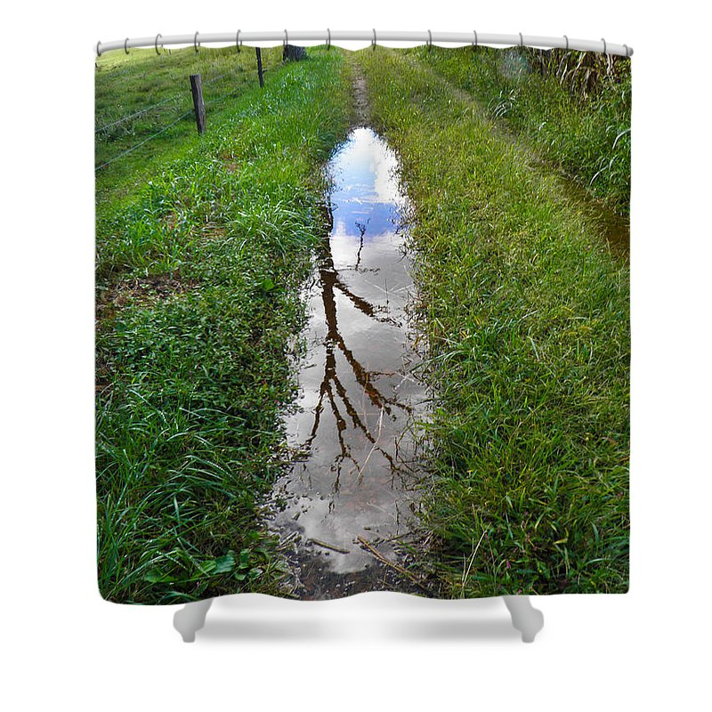 Tree Shower Curtain featuring the photograph Dead Treeflection by Nick Kirby