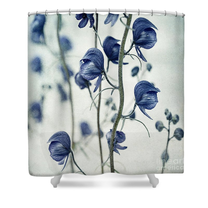 Macro Shower Curtains