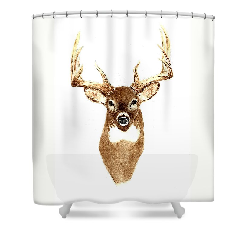 Deer Shower Curtain featuring the painting Deer - Front View by Michael Vigliotti