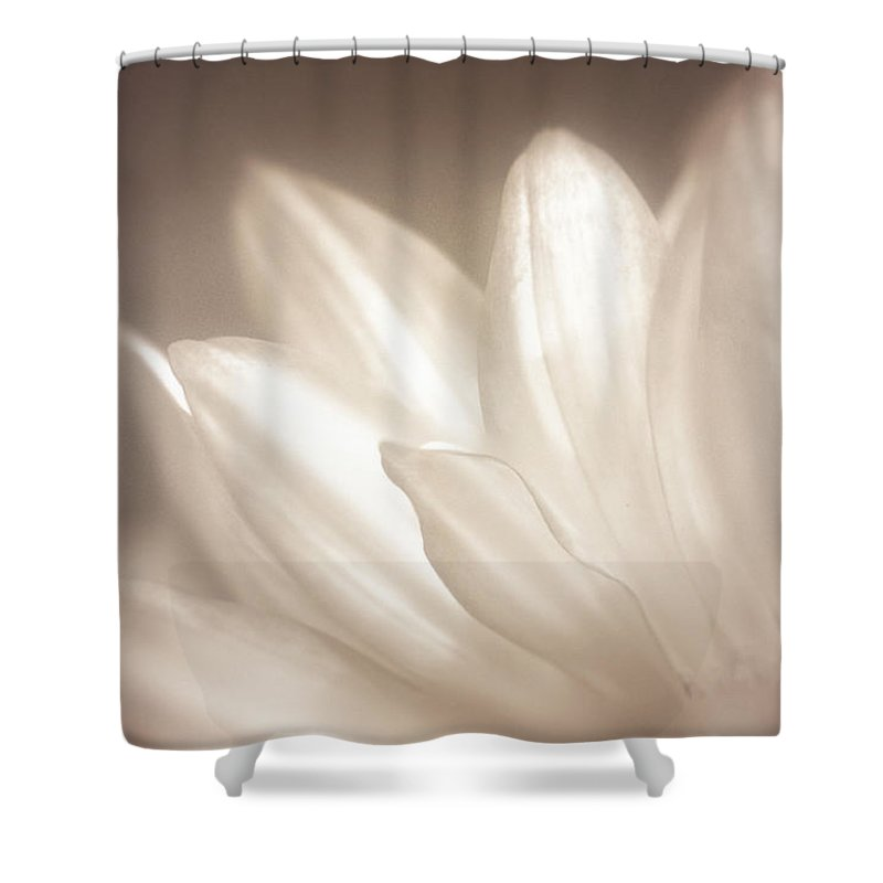Bloom Shower Curtain featuring the photograph Delicate by Scott Norris
