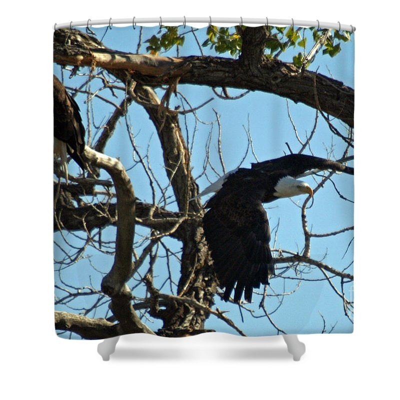 Colorado Shower Curtain featuring the photograph Departure by Bob Hislop