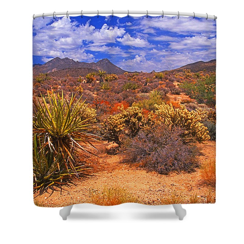 California Shower Curtain featuring the photograph Desert Beauty by Rich Walter