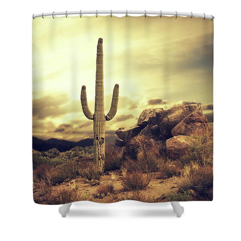 Saguaro Cactus Shower Curtain featuring the photograph Desert Cactus - Classic Southwest by Hillaryfox