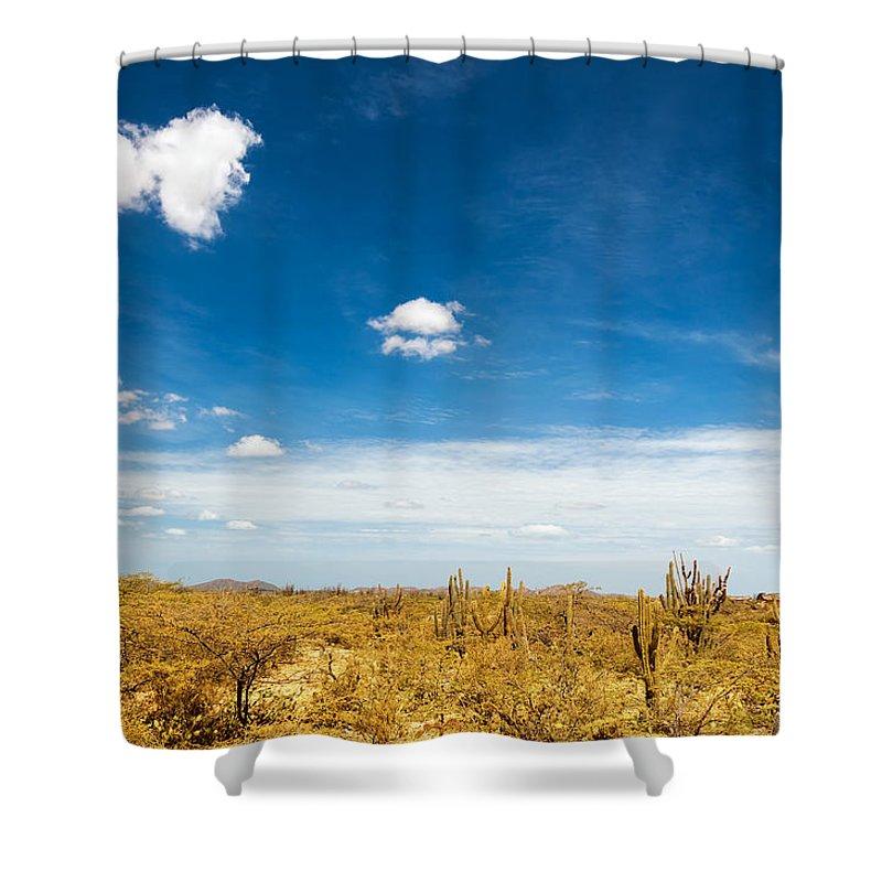 Desert Shower Curtain featuring the photograph Desert Landscape With Deep Blue Sky by Jess Kraft