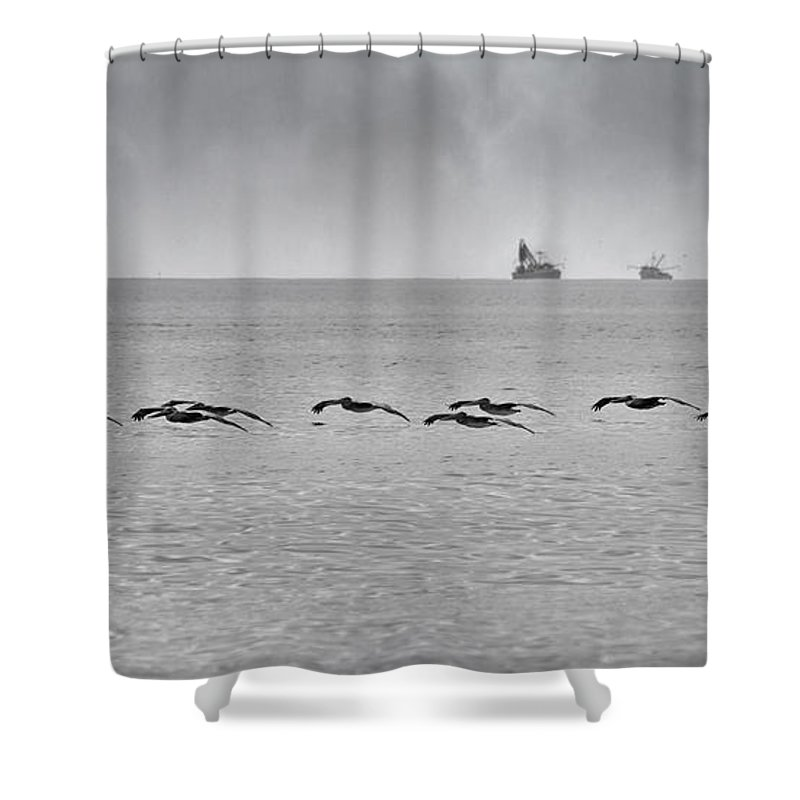 Pelican Shower Curtain featuring the photograph Destination by Betsy Knapp