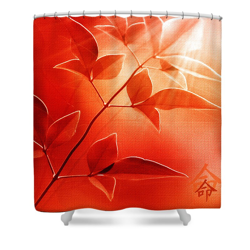 Nature Shower Curtain featuring the photograph Destiny by Holly Kempe