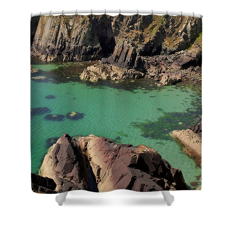 Sea Shower Curtain featuring the photograph Dive Right In by Traci Law