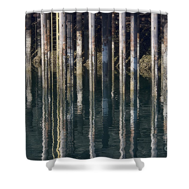 Dock Pilings Shower Curtain featuring the photograph Dock Pilings by David Arment