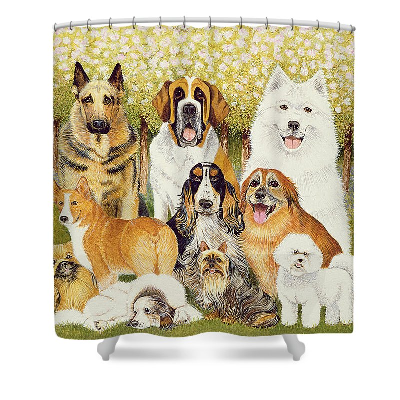 Dog Shower Curtain featuring the painting Dogs In May by Pat Scott