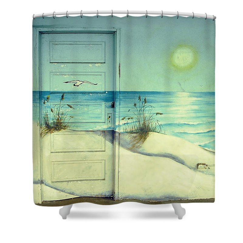 Architecture Shower Curtain featuring the photograph Door Of Perception by Skip Hunt