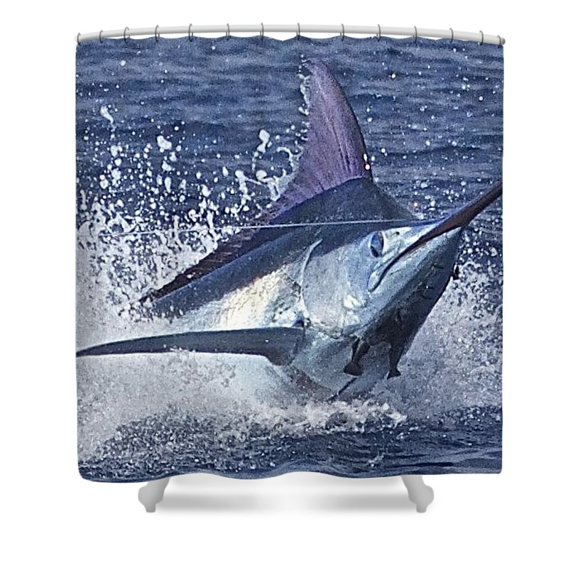 Blue Marlin Image Shower Curtain featuring the drawing Dorsal Up by Carol Lynne
