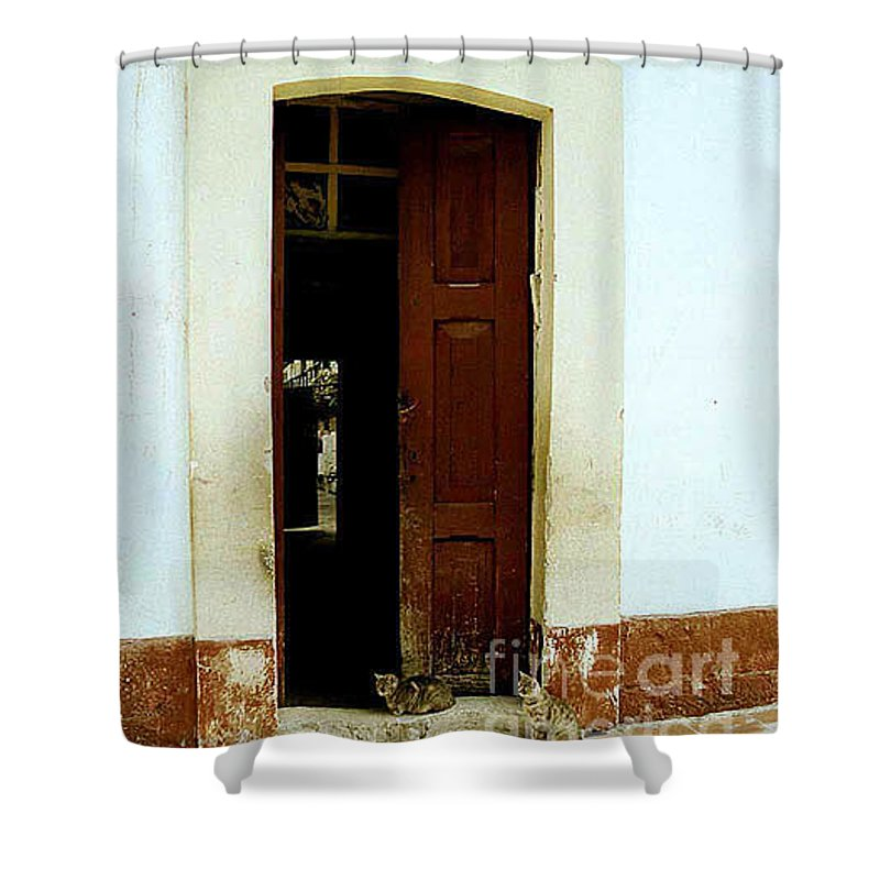 Cats Shower Curtain featuring the photograph Dos Puertas Con Dos Gatos by Kathy McClure