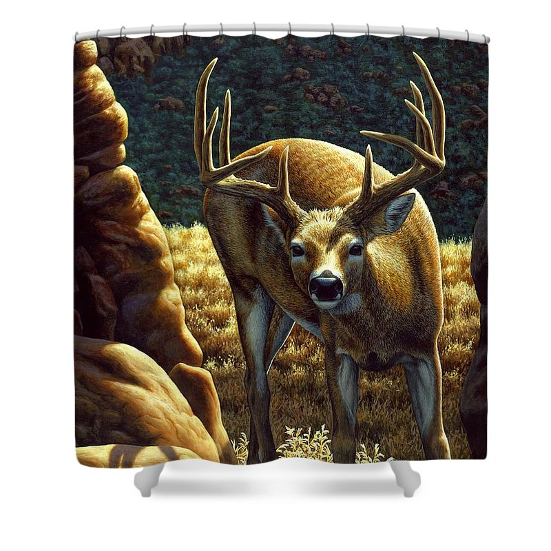 Buck Shower Curtain featuring the painting Whitetail Buck - Double Take by Crista Forest