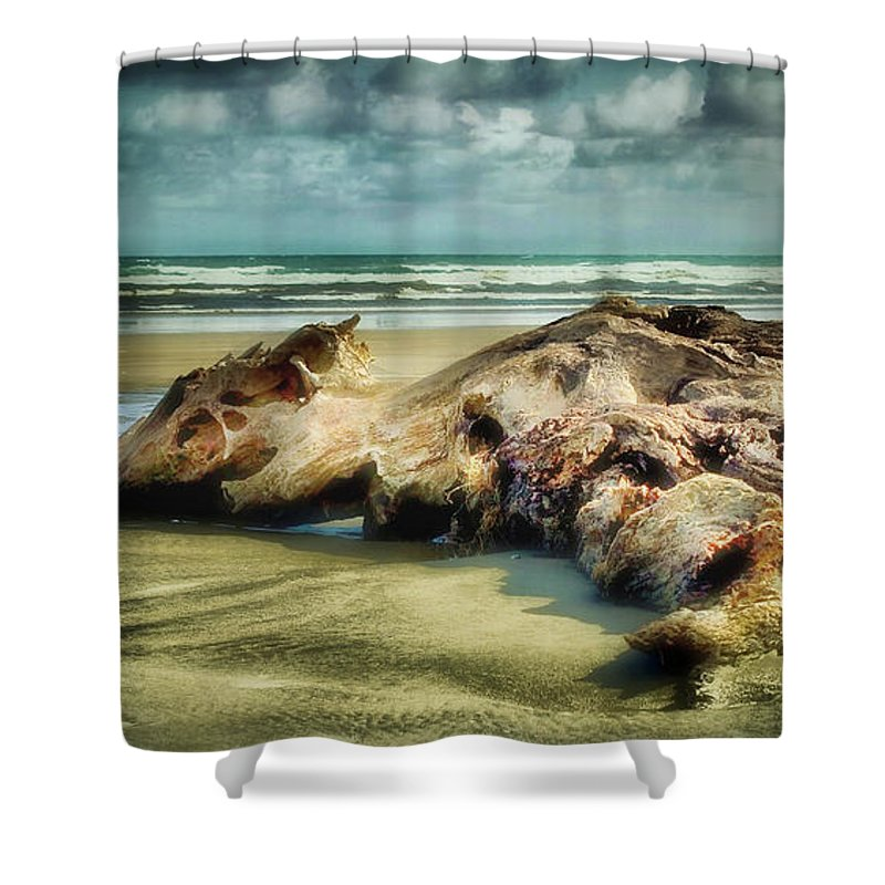 Driftwood Shower Curtain featuring the photograph Down By The Sea by Kym Clarke