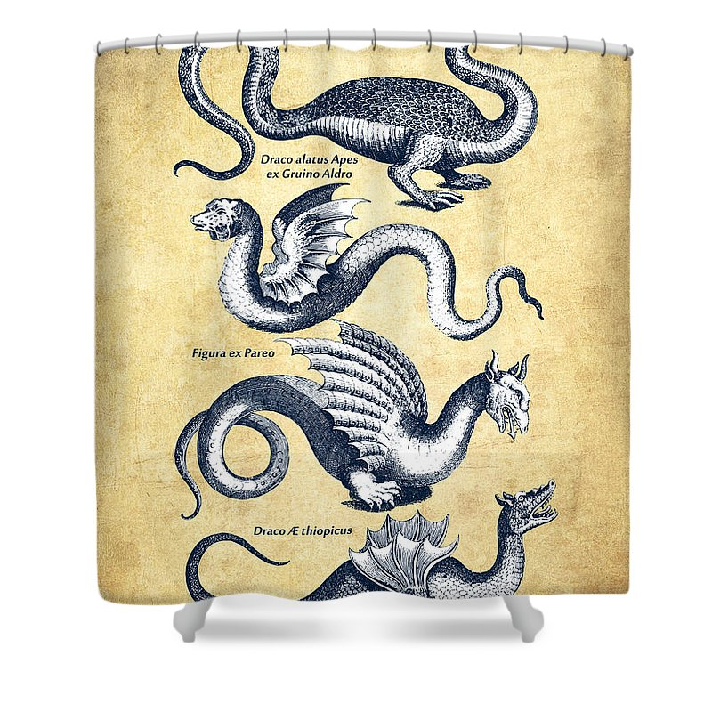 Dragon Shower Curtain featuring the drawing Dragons - Historiae Naturalis - 1657 - Vintage by Aged Pixel