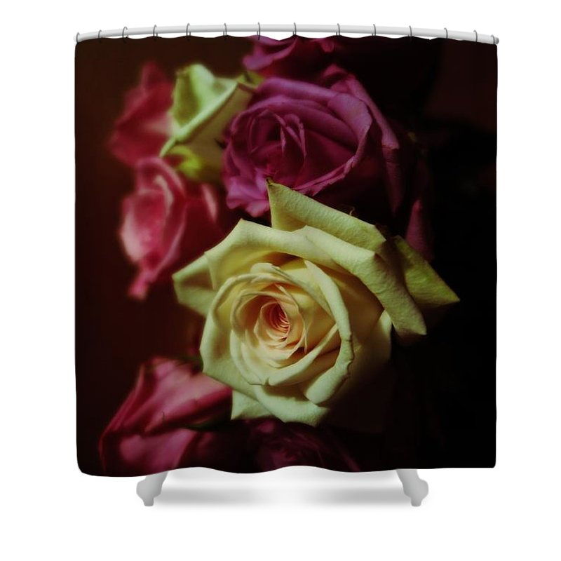 Floral Shower Curtain featuring the photograph Dramatic Purple And Yellow Roses by Tara Shalton