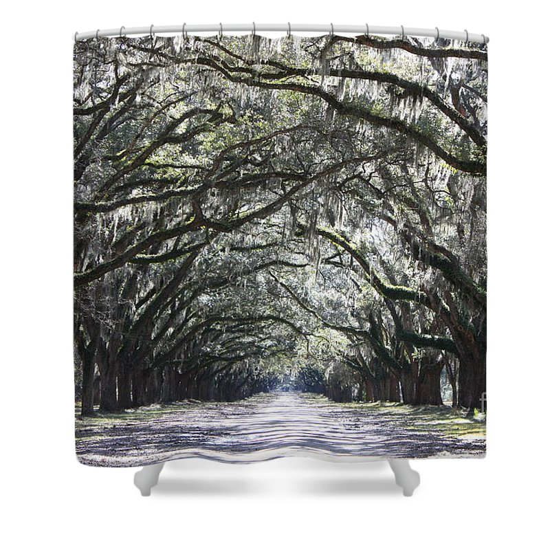Landscape Shower Curtain featuring the photograph Dream World by Carol Groenen