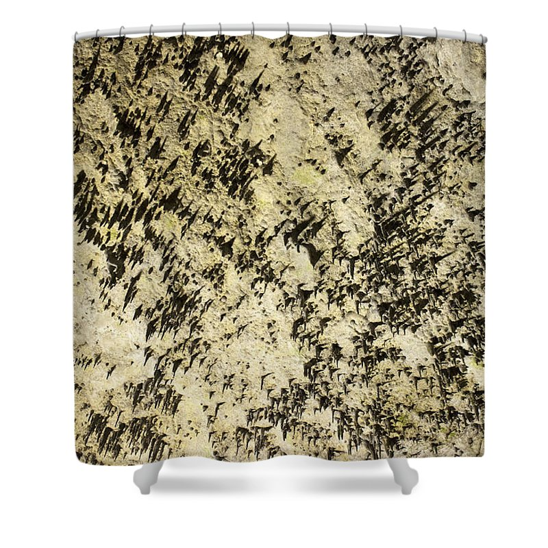 Cave Shower Curtain featuring the photograph Dripstones by Daniel Csoka