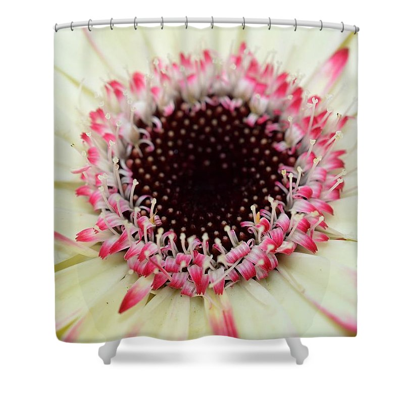 Gerber Shower Curtain featuring the photograph Dsc310d-005 by Kimberlie Gerner