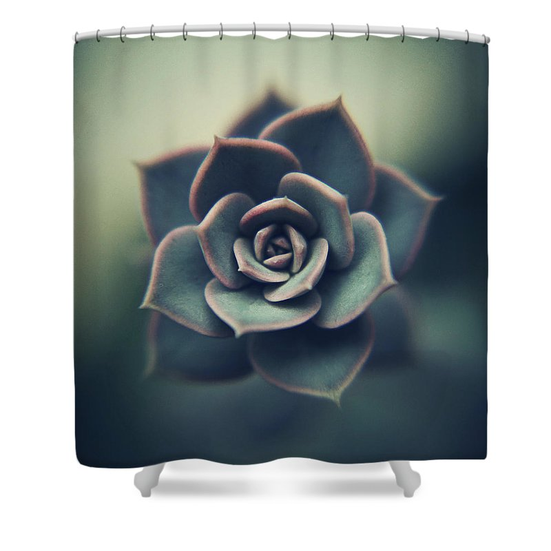 Outdoors Shower Curtain featuring the photograph Echeveria Macro by Con Ryan