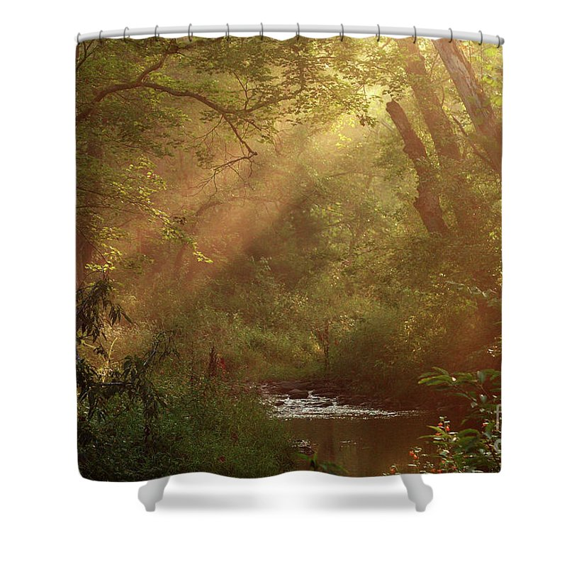 Sunlight Shower Curtain featuring the photograph Eden...maybe. by Douglas Stucky
